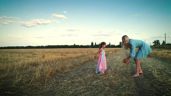 Thumbnail for Games in the Dry Field. Large Hay Field