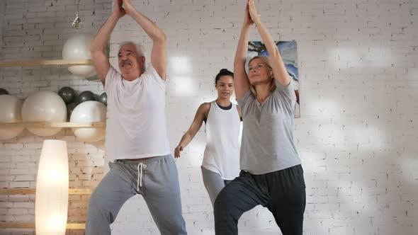 Thumbnail for Mature Caucasian Couple Enjoying Private Yoga Class