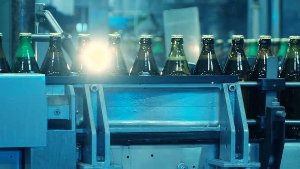 Glasflaschen auf der Abfüllanlage
