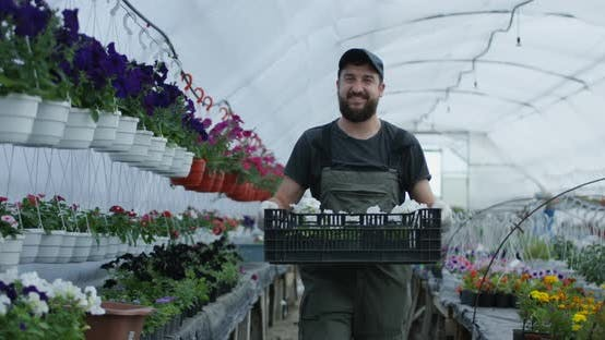 Thumbnail for Man Taking Flowers in Crate