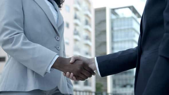 Thumbnail for African American Woman Shaking Hands with Colleague