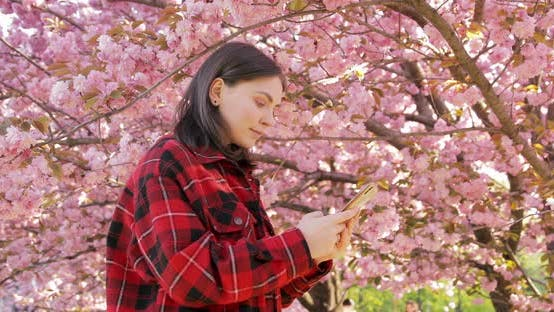 Thumbnail for Laughing female using mobile phone application while standing on blooming sakura park in Japan