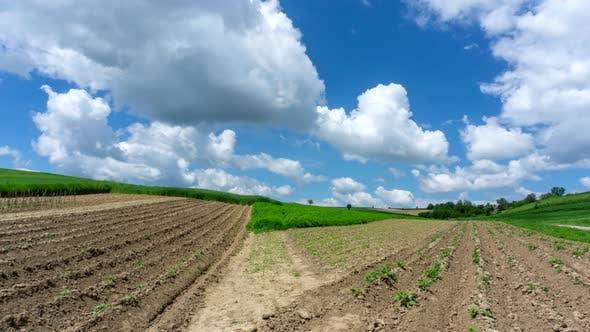 4k timelapse of plowed field.