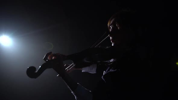 Thumbnail for Musician Girl Backs To the Camera Playing the Violin