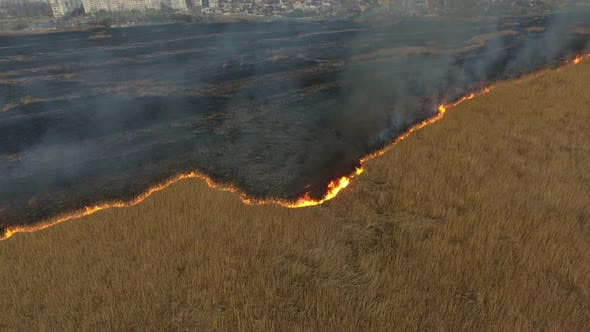 Cover Image for Aerial Shot of Advancing Wildfire at Dnipro Basin Marshes on a Sunny Day in Spring