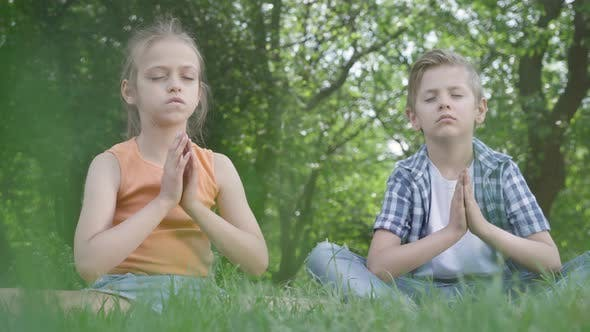 Cover Image for Pretty Little Girl and the Handsome Boy Sitting on the Grass Meditating. Children Are in Yoga. The