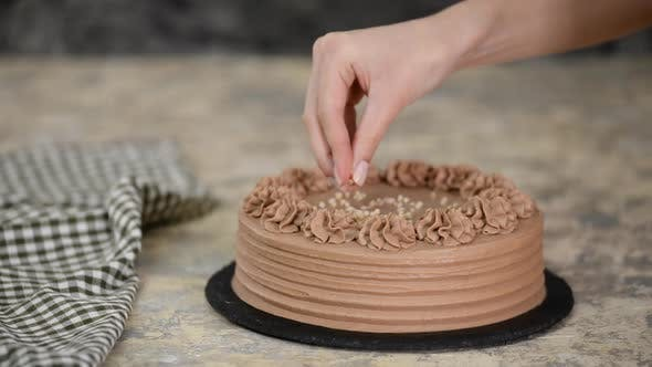 Thumbnail for Close-up of sprinkle nuts on a cream of a chocolate sponge cake.