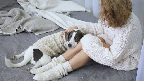 Young Woman Sitting On Bed With Her Dog Wearing Cozy Knitted Sweaters