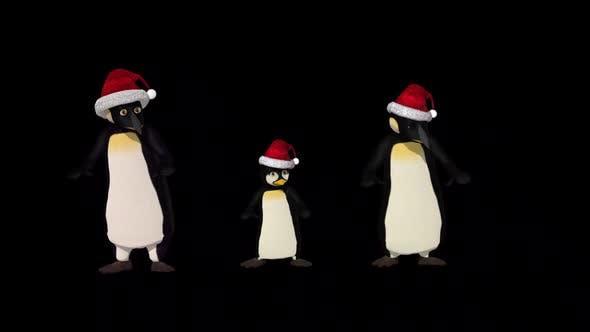 Thumbnail for Penguin Family Dance