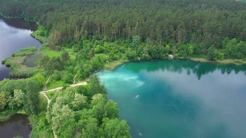 Aerial View Lake Shore Forest Shore
