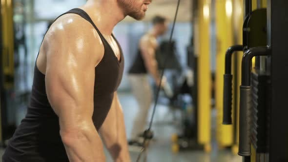 Thumbnail for Sweaty Upper Body of Guy Doing Pull-Downs in Gym, Looking at His Biceps