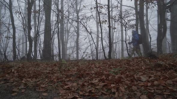 Thumbnail for Exhausted Lost Male Tourist with Walking Sticks Wandering in Deep Foggy Forest