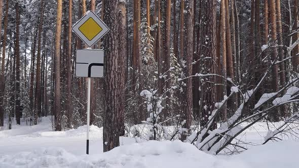 Thumbnail for Road Sign a Priority Road in Snowy Forest