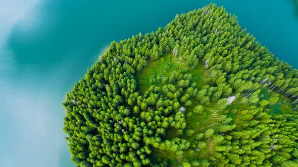 Aerial view of a mountain forest lake. Forest and lake border. Coastline view from the drone.