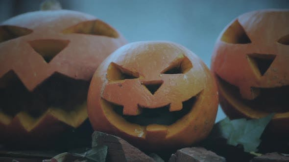 Thumbnail for Three halloween spooky pumpkins with scary faces