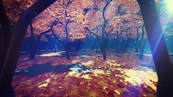 Thumbnail for Autumn Forest 4k