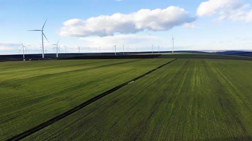 Windmills on Evergreen