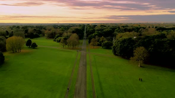 Thumbnail for Aeriala view over irish park in autumn