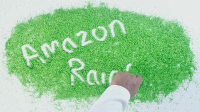 Green Writing   Amazon Rain Forest