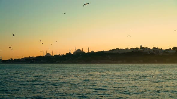 Thumbnail for Istanbul City