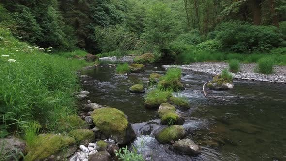 Thumbnail for Flying up a creek in Oregon, USA