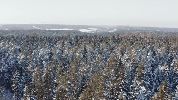 Aerial Winter Wonderland