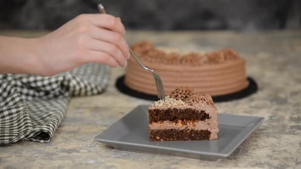 Thumbnail for Piece of Delicious Chocolate Cake with nuts and caramel.