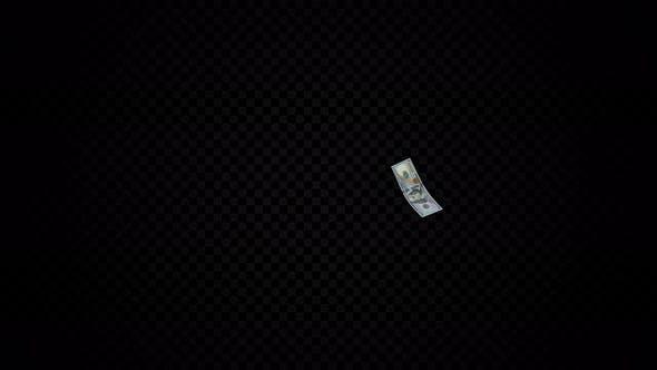 Flight Hundred Dollar Bill