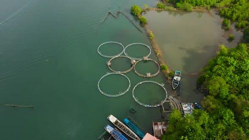 Fisheries on Luzon Island Philippines