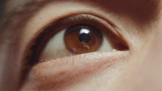 Japanese Asian Man Eyes Closeup Detail Macro Shot Portrait Macro of Man