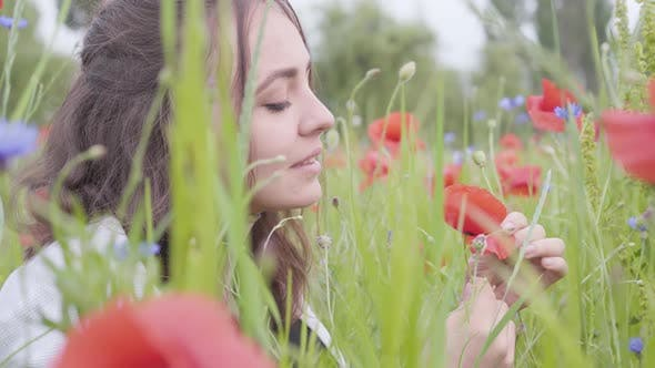 Cover Image for Side View of Pretty Girl in Poppy Field Tears Off Petals of a Poppy Flower