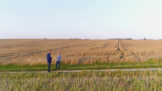 Thumbnail for Young Farmers Discussing At Maize Field