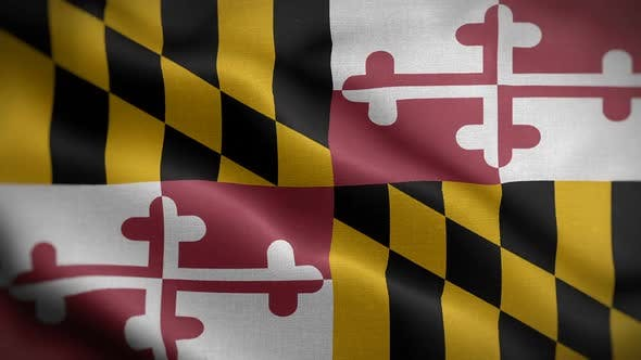 Maryland State Flag Blowing In Wind