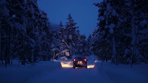 Thumbnail for Car is Driving through the Night Winter Forest