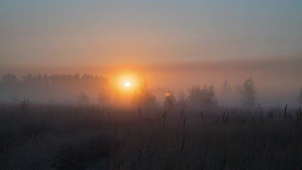 Autumn Sunrise Through The Fog