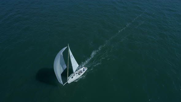 Thumbnail for Yacht in a Sailing Race