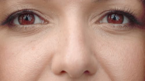 Brown Woman Eyes Close Up. Women's Eyes Are Brown, Slowly Closing and Opening. Perfect Female Eyes.