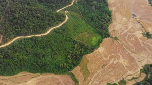 Aerial: flying over rice paddies unique valley scenic cliffs rock pinnacles tropical jungle Laos