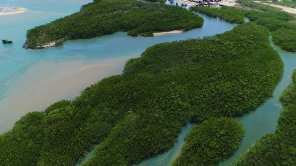 Aerial view of transparent river surrounded by rainforest, Cascalve, Brazil.