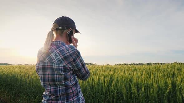 Thumbnail for A Female Farmer Is Talking on the Phone Near a Wheat Field