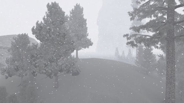 Thumbnail for Snowfall  in the Forest