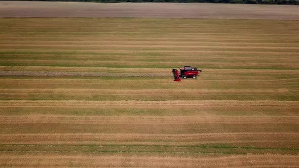 Thumbnail for Combine Harvester Working on the Wheat Field