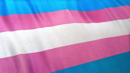 Transgender Pride Flag Loop