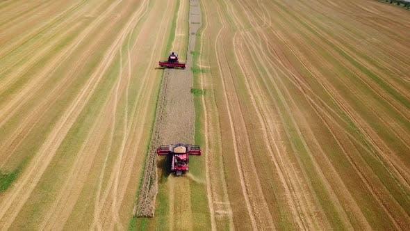 Landwirtschaftslandschaft