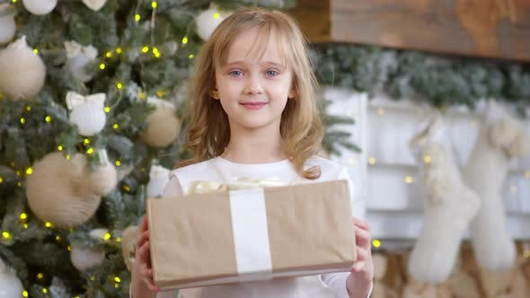 Thumbnail for Portrait of Happy Little Girl with Christmas Gift