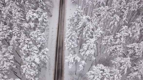 Thumbnail for Aerial View of Snowy Forest with a Road. Captured From Above with a Drone.