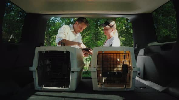 Thumbnail for A Man Gets a Dog in a Cage, Signs for Receipt
