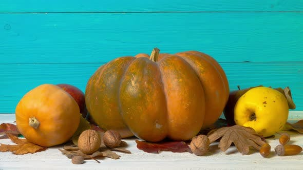 Thumbnail for Halloween Still Life with Decorative Pumpkins, Walnuts, Acorns and Autumn Leaves