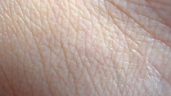 Cover Image for Human Skin Macro Background