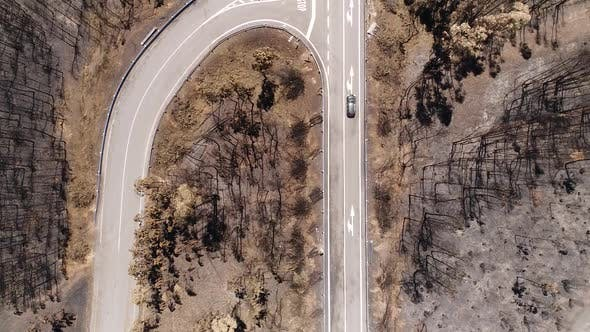 Thumbnail for Cars Crossing Road Surrounded by Burned Natural Park